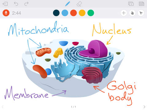 Screenshots of Educreations Interactive Whiteboard