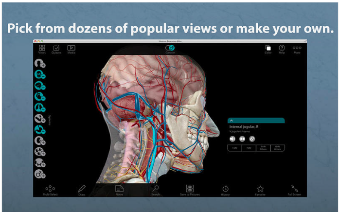 Screenshots of Human Anatomy Atlas – 3D Anatomical Model of the Human Body